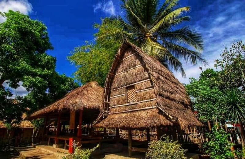 7 Fakta Unik Rumah Adat Suku Sasak Lombok Yang Jarang Diketahui